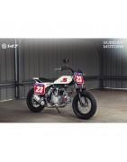 Sunday Motors - Mini motocykle flat track - Sklep Pit Bike Store